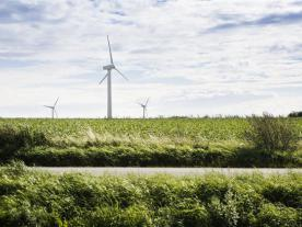 DONG Energy's Polish onshore wind business operates three wind farms with a total installed capacity of 111.5 MW and has a development portfolio of more than 700 MW. Photo: DONG Energy